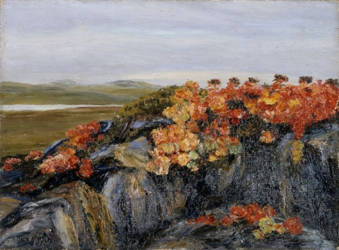 Писахов С.Г. (1879–1960). Красные цветы на Новой Земле. Этюд. 1910-е