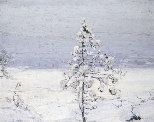 «Снегом сыпучим, как ризой, одета она». 1910-е