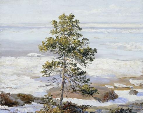 Весна в Белом море (Море, освобожденное ото льда)