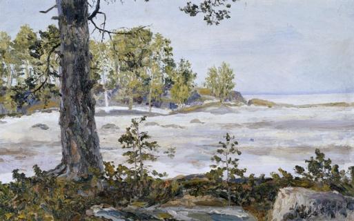 Новоземельский пейзаж. 1911